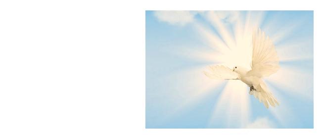 Pentecost: Sunday, May 20th