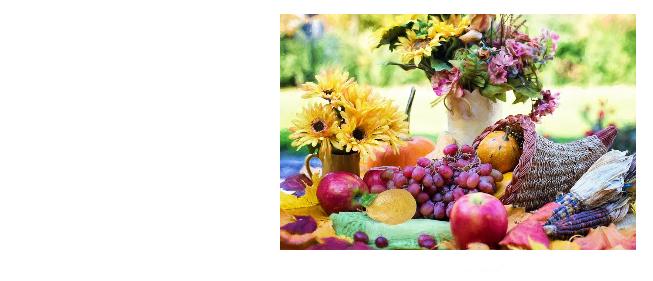 Harvest Fellowship Dinner (11/4)